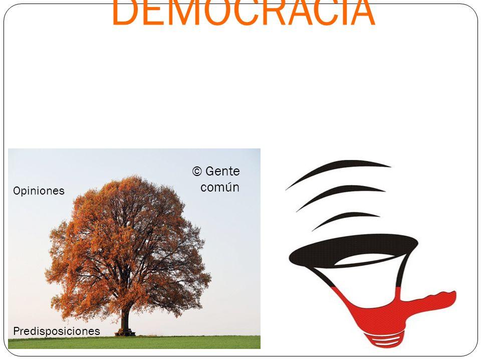 DEMOCRACIA © Gente común Opiniones Predisposiciones