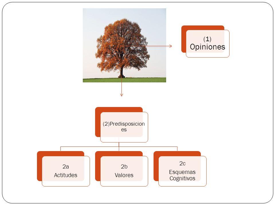 (1) Opiniones 2a Actitudes 2b Valores 2c Esquemas Cognitivos