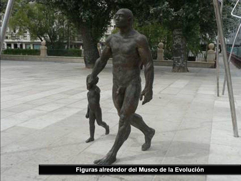 Figuras alrededor del Museo de la Evolución