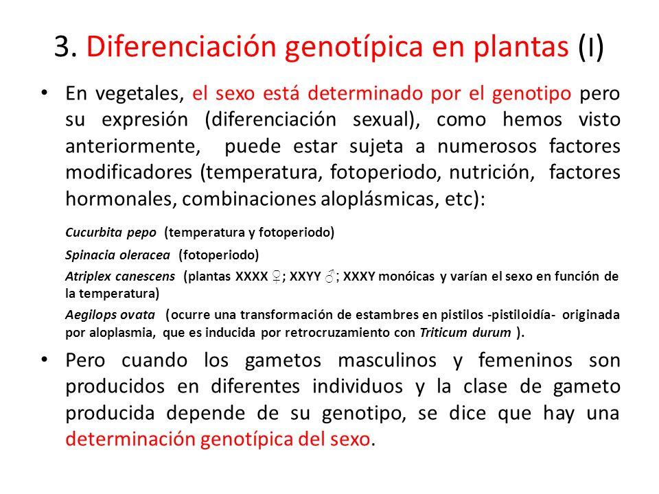 3. Diferenciación genotípica en plantas (I)