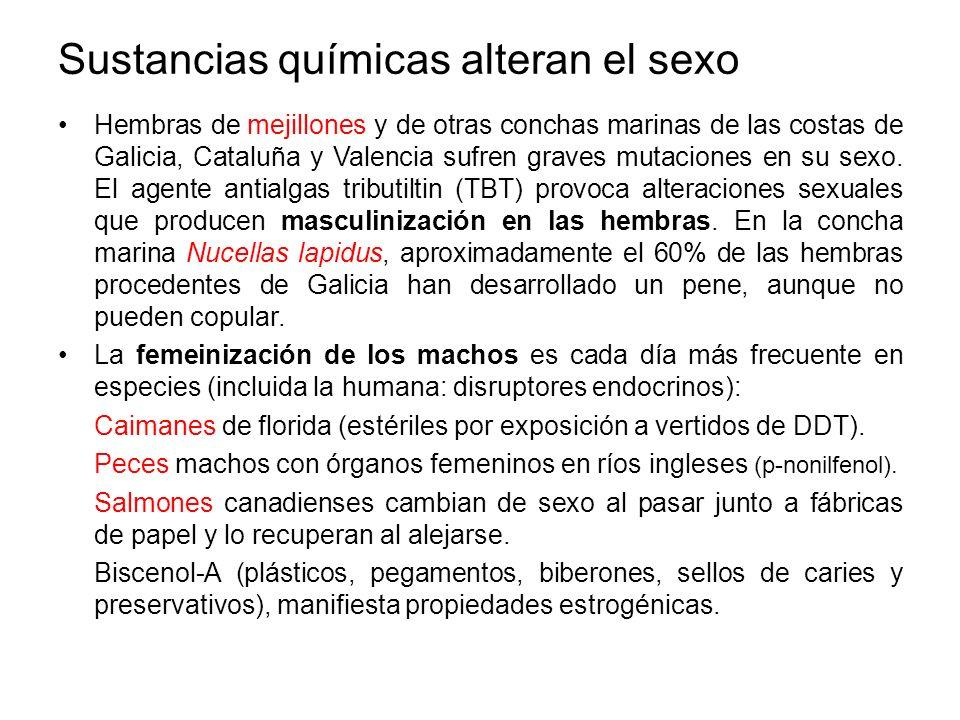 Sustancias químicas alteran el sexo