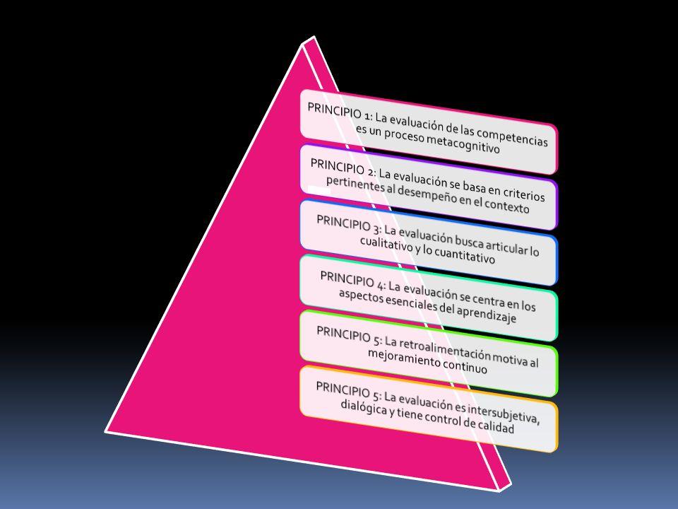 PRINCIPIO 5: La retroalimentación motiva al mejoramiento continuo
