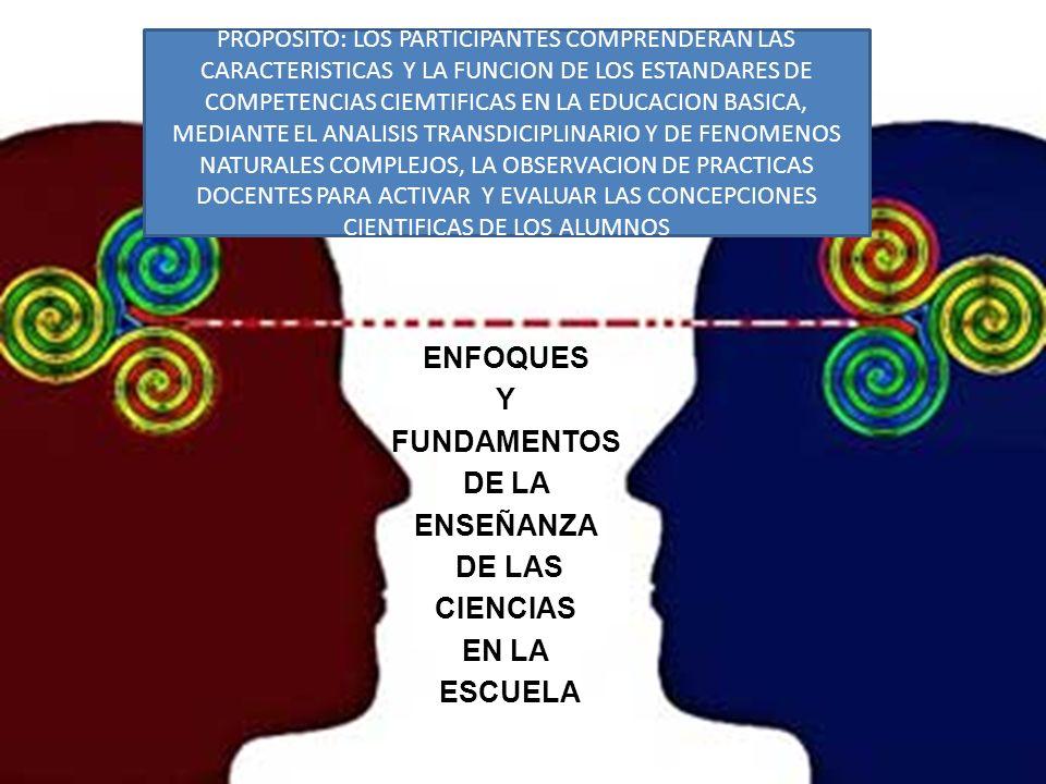 ENFOQUES Y FUNDAMENTOS DE LA ENSEÑANZA DE LAS CIENCIAS EN LA ESCUELA