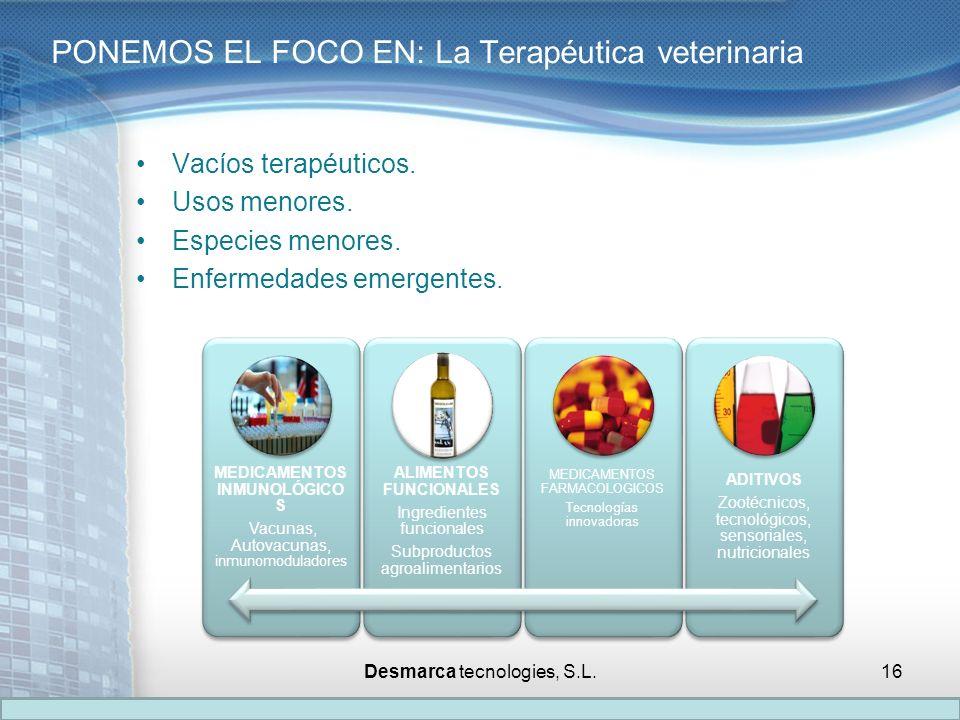 PONEMOS EL FOCO EN: La Terapéutica veterinaria