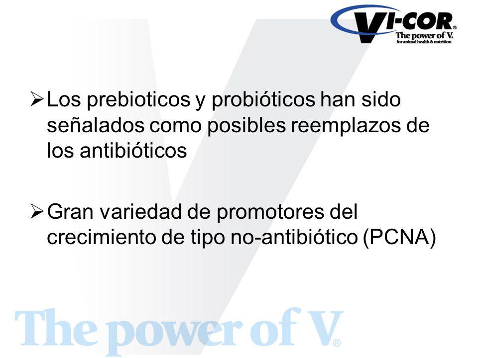 Los prebioticos y probióticos han sido señalados como posibles reemplazos de los antibióticos