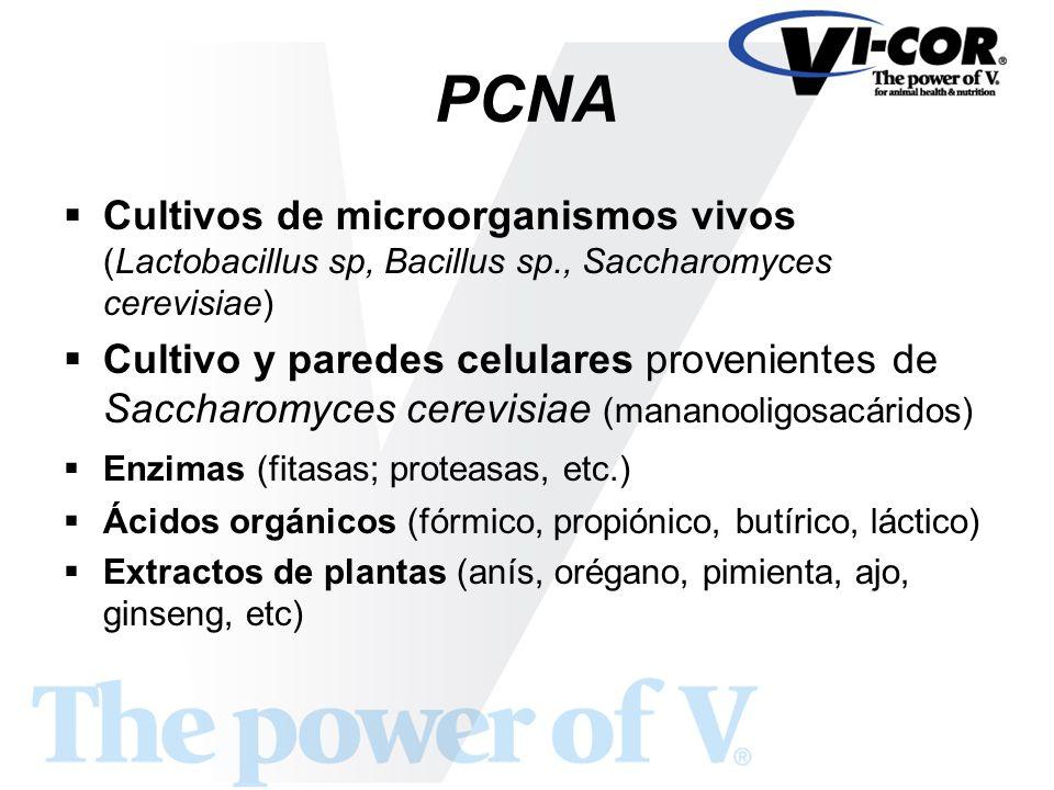 PCNA Cultivos de microorganismos vivos (Lactobacillus sp, Bacillus sp., Saccharomyces cerevisiae)