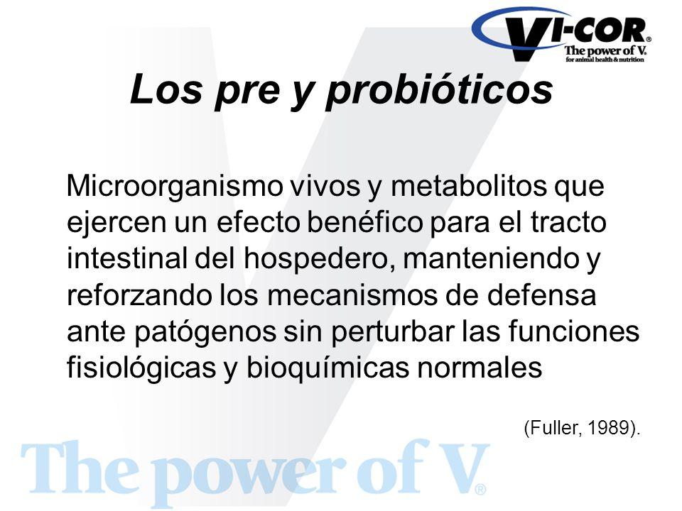 Los pre y probióticos