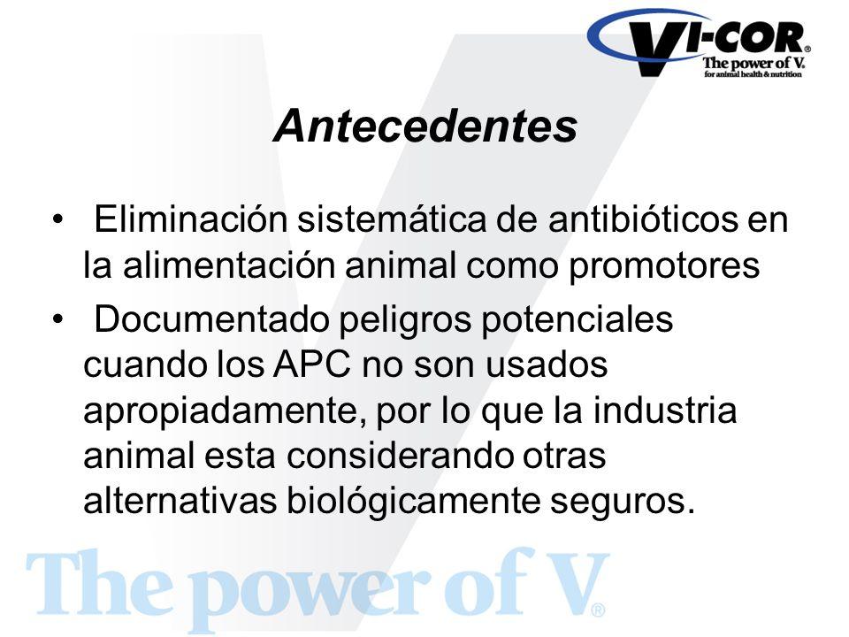 Antecedentes Eliminación sistemática de antibióticos en la alimentación animal como promotores.