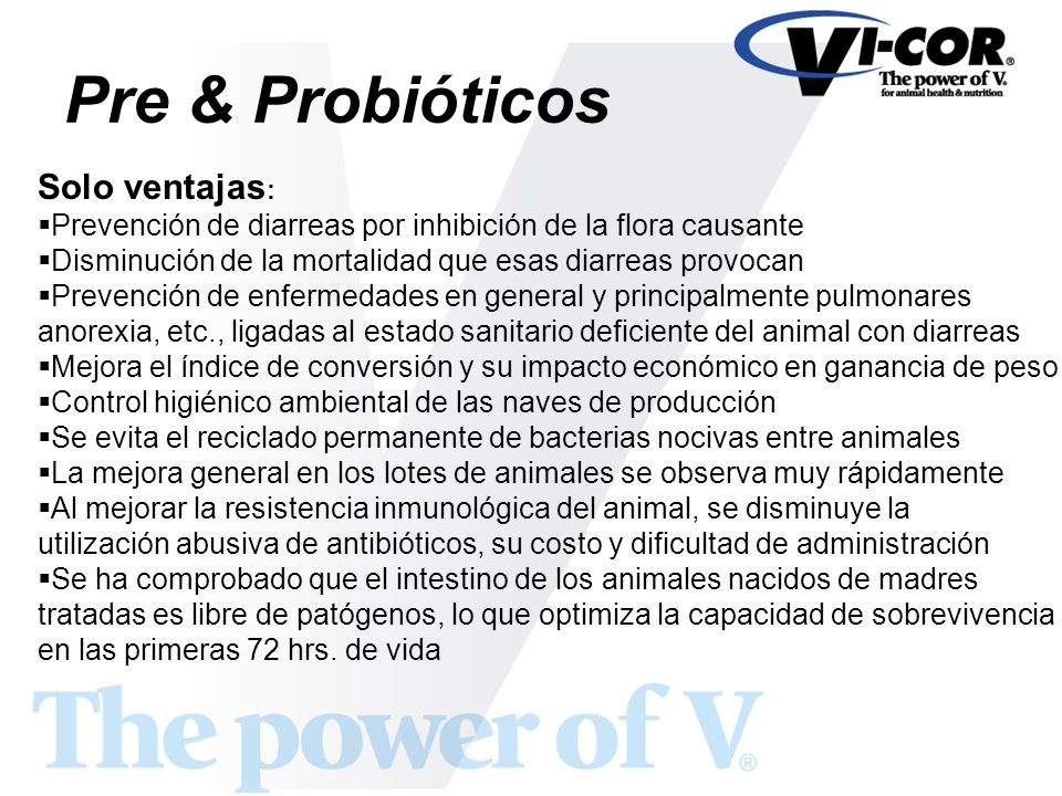 Pre & Probióticos Solo ventajas: