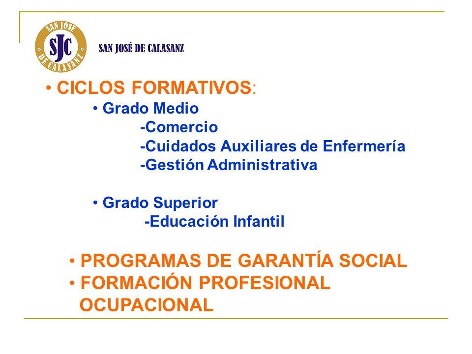 PROGRAMAS DE GARANTÍA SOCIAL FORMACIÓN PROFESIONAL OCUPACIONAL