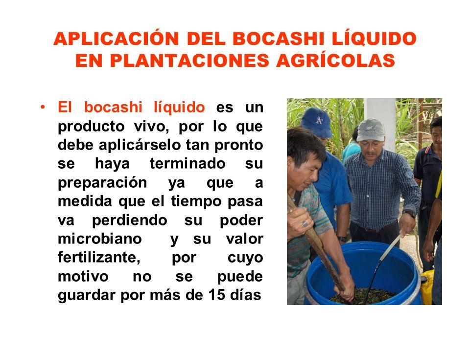 APLICACIÓN DEL BOCASHI LÍQUIDO EN PLANTACIONES AGRÍCOLAS