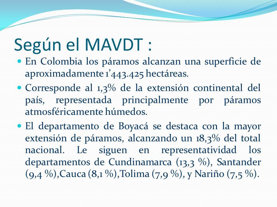 Según el MAVDT :En Colombia los páramos alcanzan una superficie de aproximadamente 1'443.425 hectáreas.