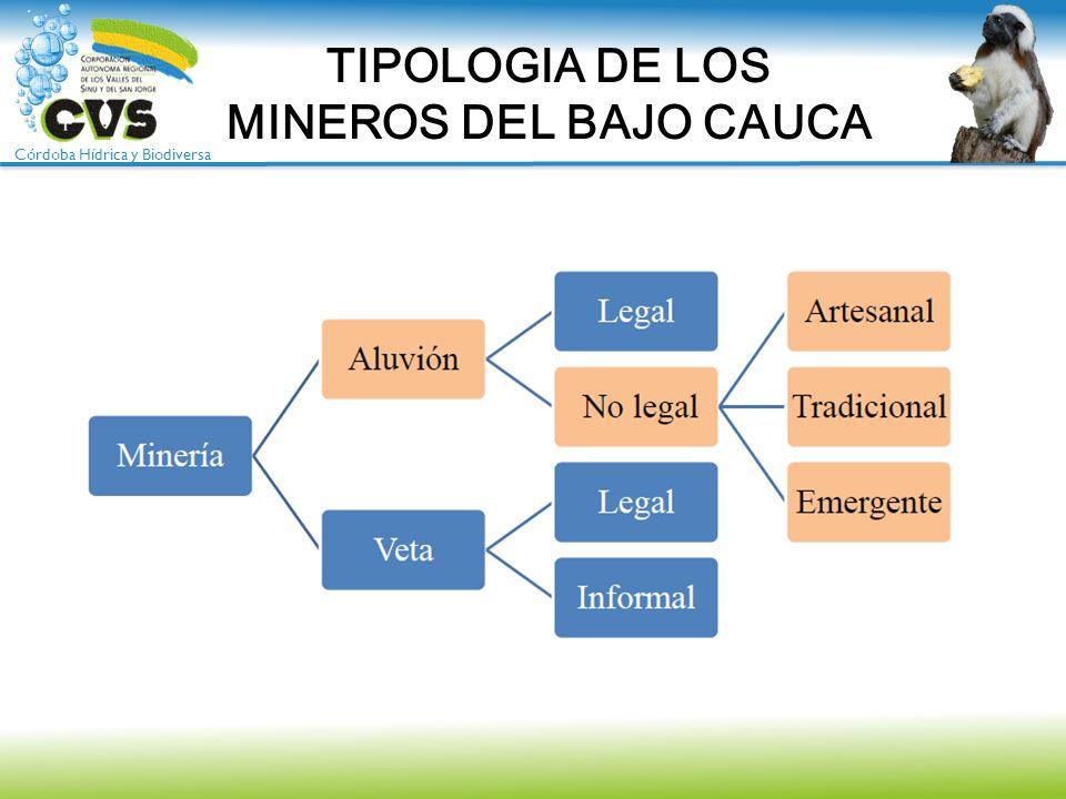 TIPOLOGIA DE LOS MINEROS DEL BAJO CAUCA