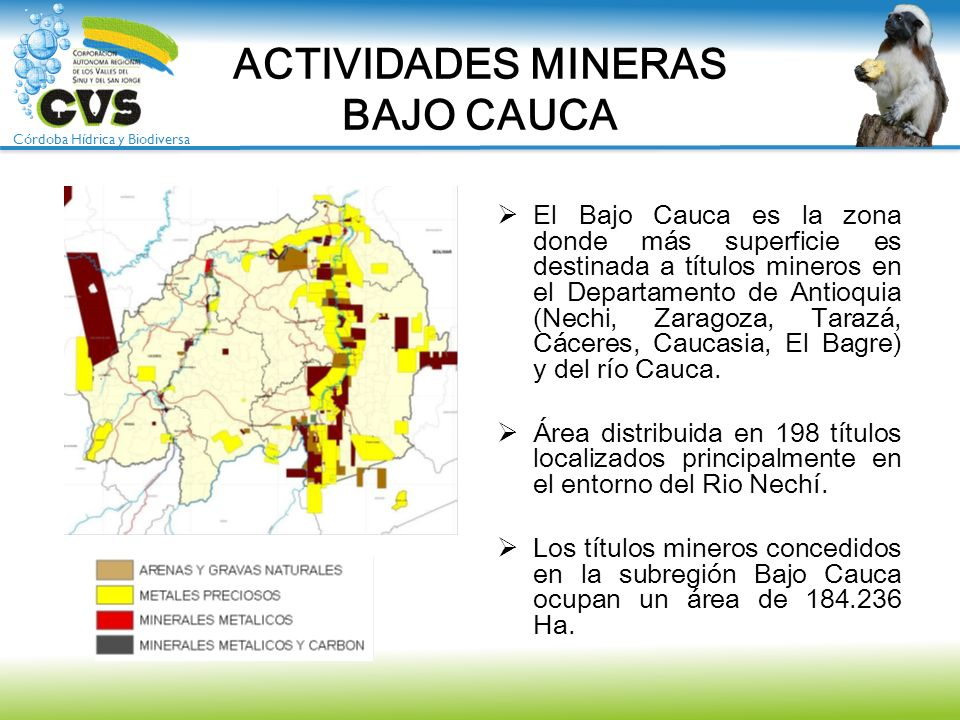 ACTIVIDADES MINERAS BAJO CAUCA