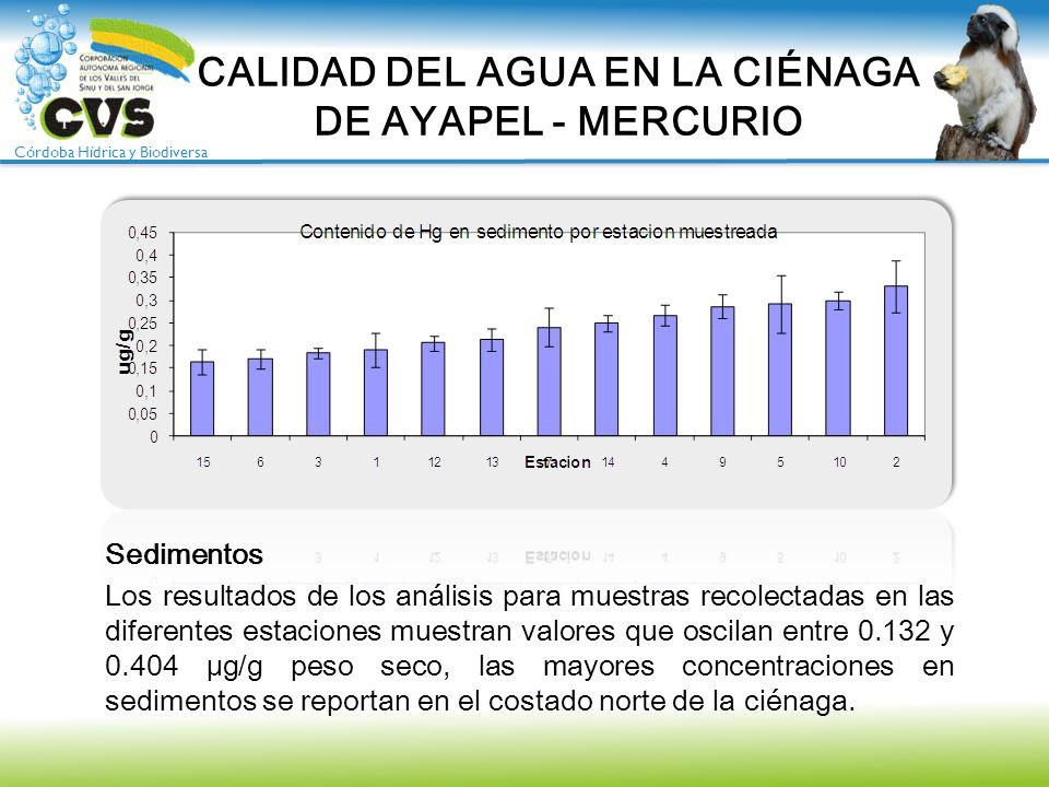 CALIDAD DEL AGUA EN LA CIÉNAGA DE AYAPEL - MERCURIO