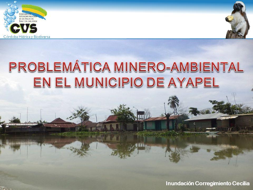 PROBLEMÁTICA MINERO-AMBIENTAL EN EL MUNICIPIO DE AYAPEL