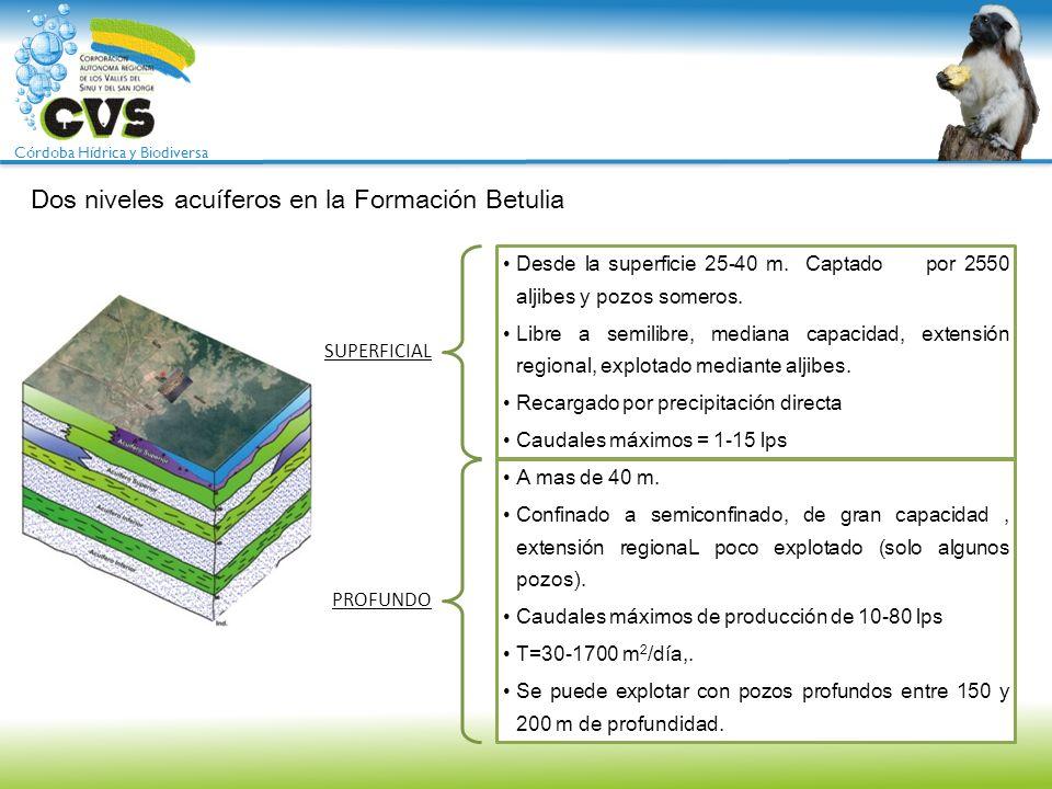 Dos niveles acuíferos en la Formación Betulia