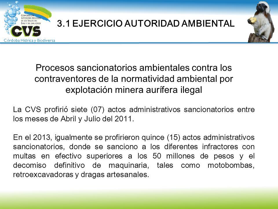 3.1 EJERCICIO AUTORIDAD AMBIENTAL