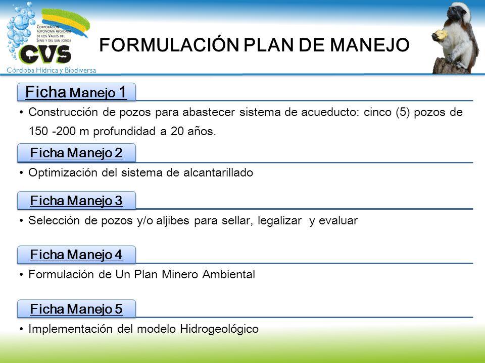 FORMULACIÓN PLAN DE MANEJO