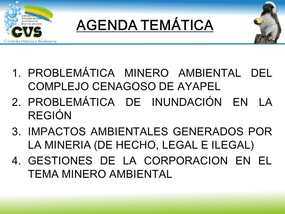 AGENDA TEMÁTICAPROBLEMÁTICA MINERO AMBIENTAL DEL COMPLEJO CENAGOSO DE AYAPEL. PROBLEMÁTICA DE INUNDACIÓN EN LA REGIÓN.