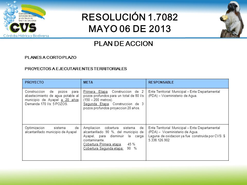RESOLUCIÓN 1.7082 MAYO 06 DE 2013 PLAN DE ACCION PLANES A CORTO PLAZO