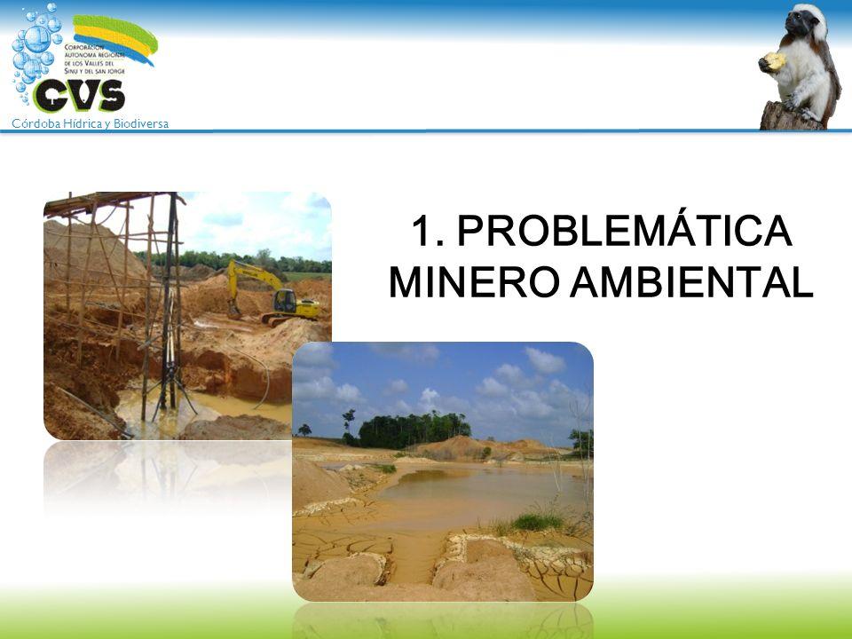 1. PROBLEMÁTICA MINERO AMBIENTAL