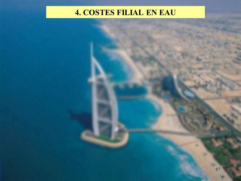 4. COSTES FILIAL EN EAU