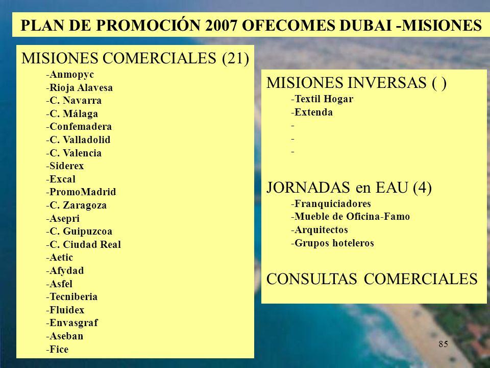 PLAN DE PROMOCIÓN 2007 OFECOMES DUBAI -MISIONES