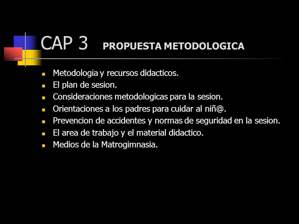 CAP 3 PROPUESTA METODOLOGICA