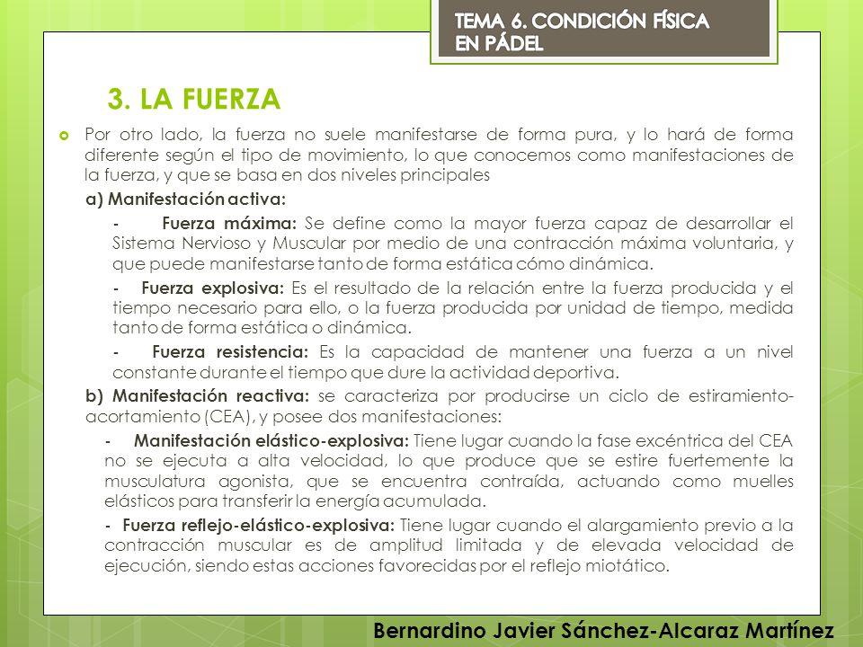 3. LA FUERZA Bernardino Javier Sánchez-Alcaraz Martínez
