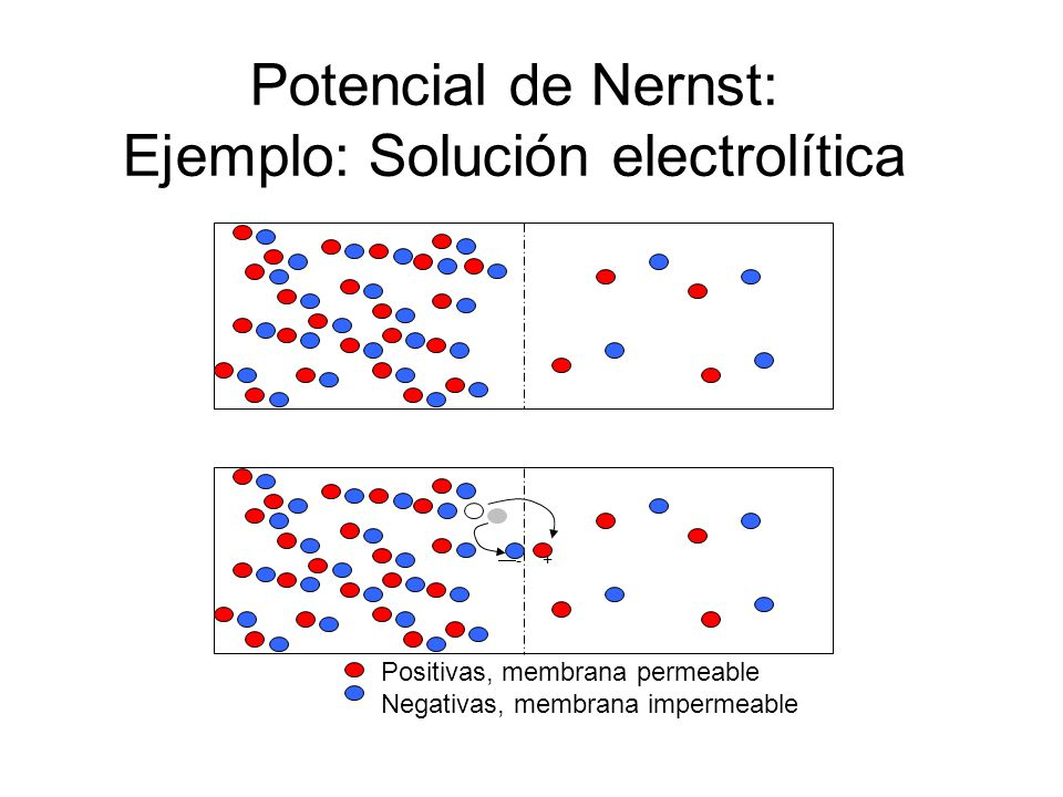 Potencial de Nernst: Ejemplo: Solución electrolítica