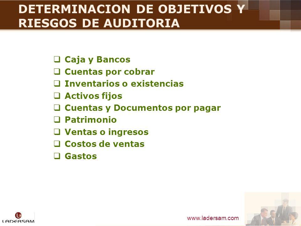 DETERMINACION DE OBJETIVOS Y RIESGOS DE AUDITORIA