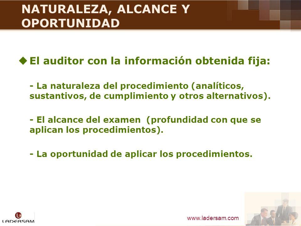 NATURALEZA, ALCANCE Y OPORTUNIDAD