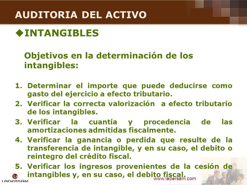 AUDITORIA DEL ACTIVO INTANGIBLES
