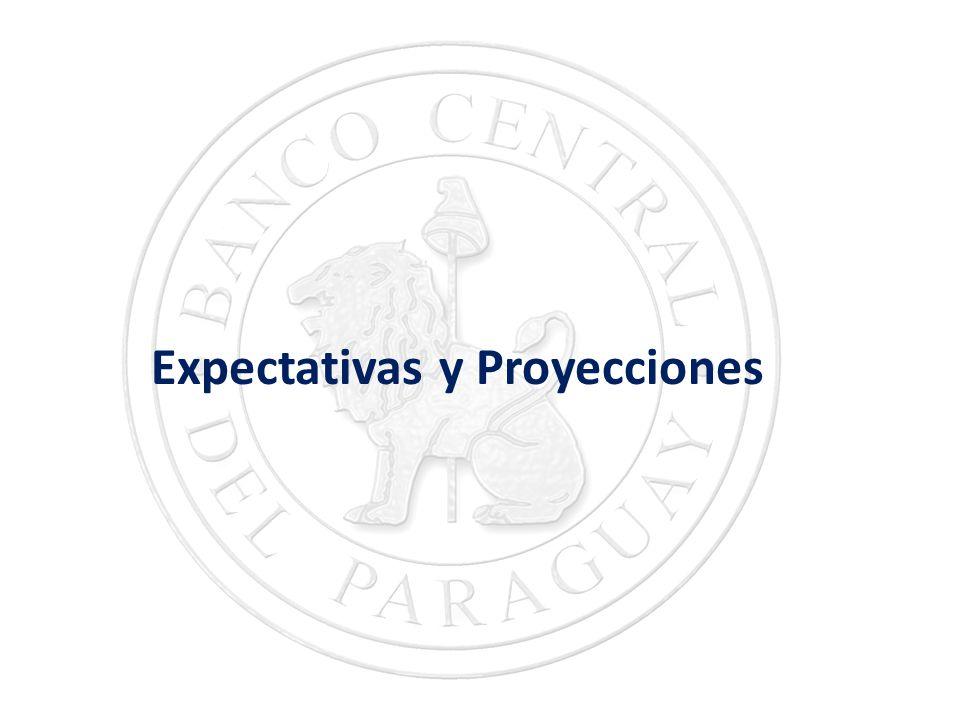 Expectativas y Proyecciones
