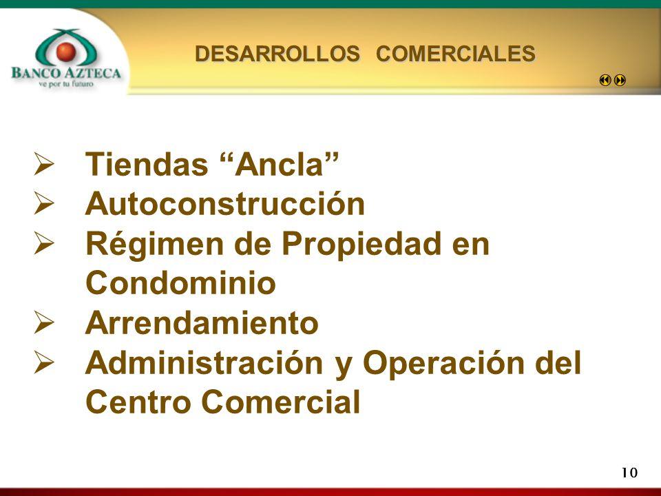 DESARROLLOS COMERCIALES