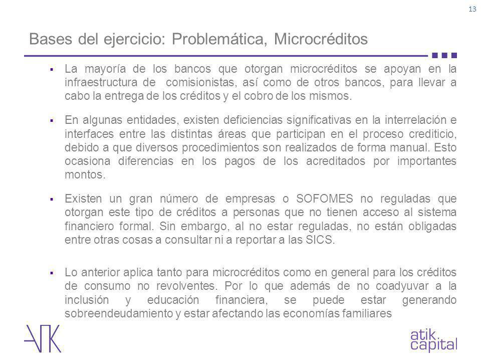 Bases del ejercicio: Problemática, Microcréditos
