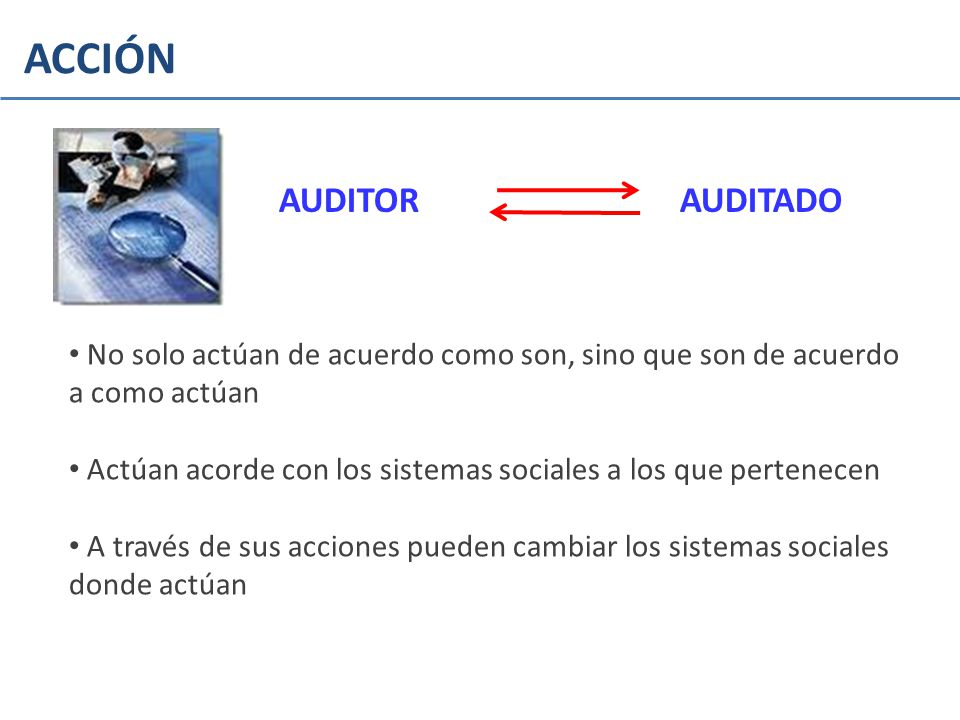 ACCIÓN AUDITOR AUDITADO