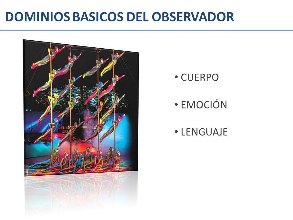 DOMINIOS BASICOS DEL OBSERVADOR