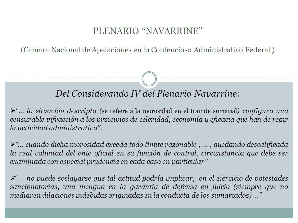 Del Considerando IV del Plenario Navarrine: