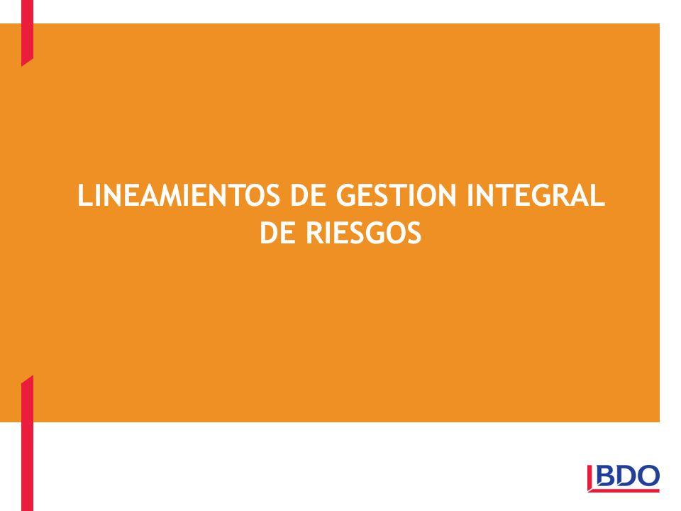 LINEAMIENTOS DE GESTION INTEGRAL