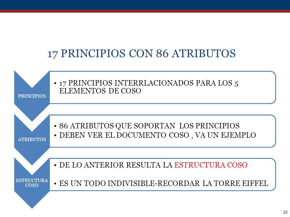 17 PRINCIPIOS CON 86 ATRIBUTOS