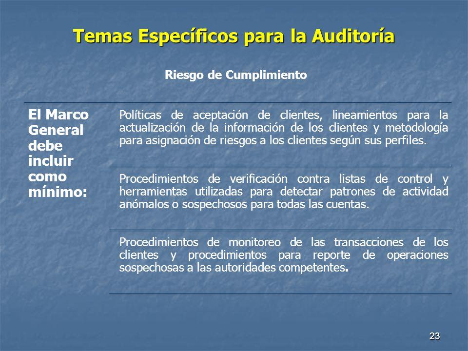 Temas Específicos para la Auditoría