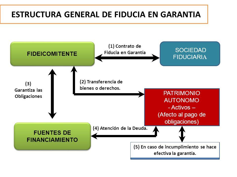 ESTRUCTURA GENERAL DE FIDUCIA EN GARANTIA