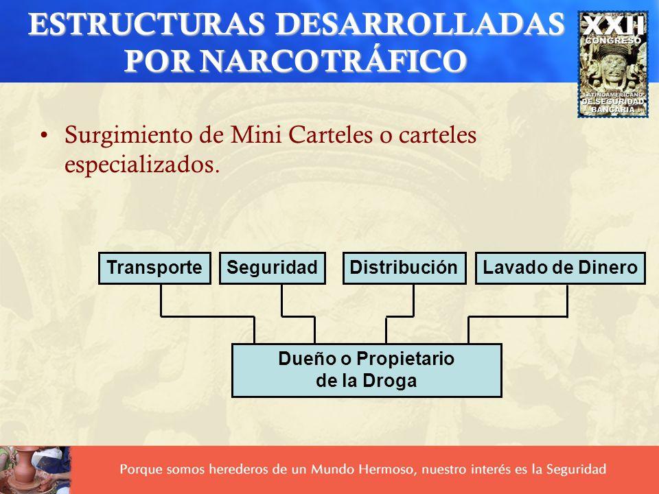 ESTRUCTURAS DESARROLLADAS POR NARCOTRÁFICO