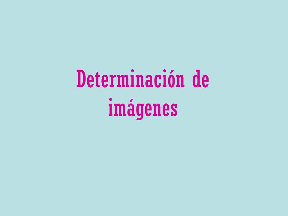 Determinación de imágenes