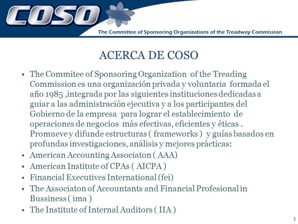 ACERCA DE COSO