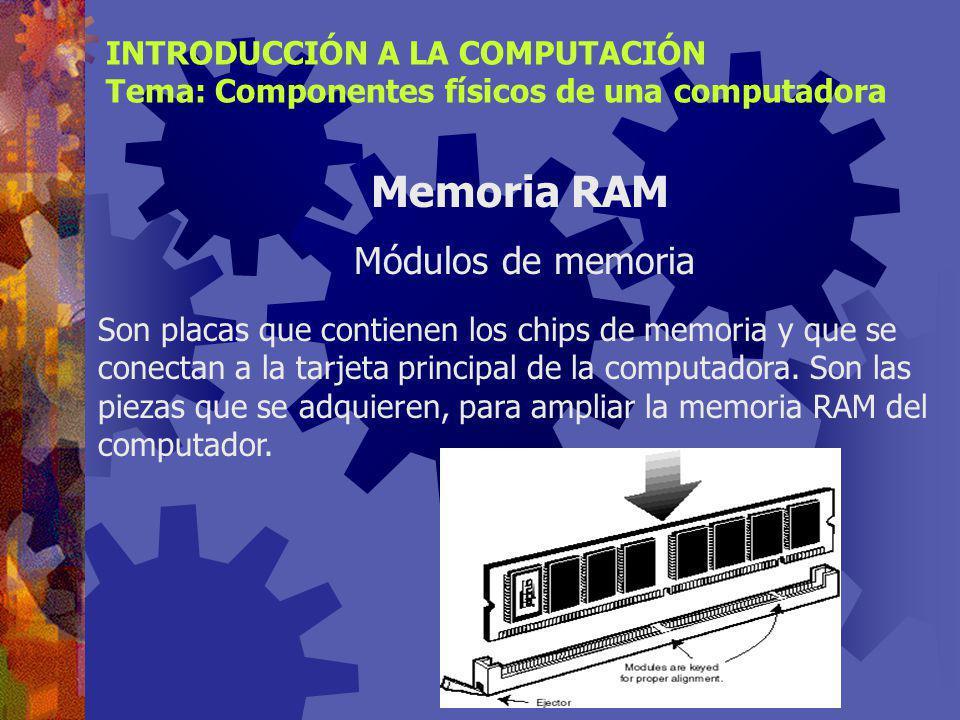 Memoria RAM Módulos de memoria INTRODUCCIÓN A LA COMPUTACIÓN