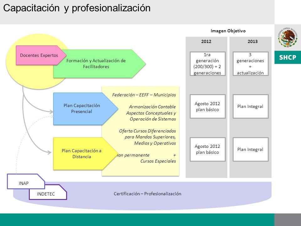 Capacitación y profesionalización