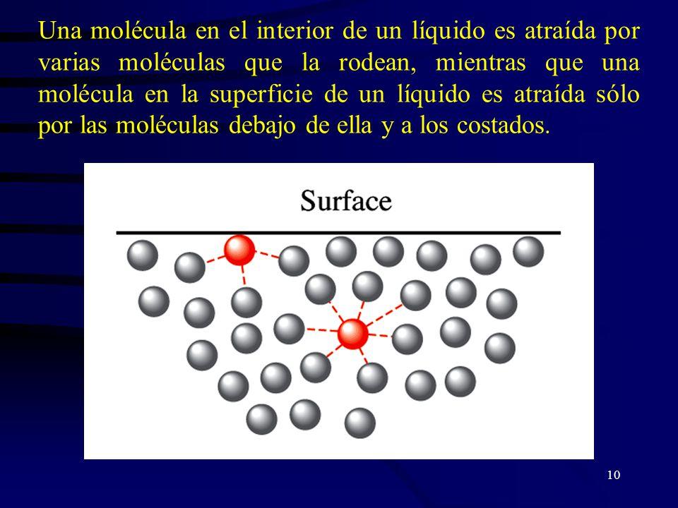 Una molécula en el interior de un líquido es atraída por varias moléculas que la rodean, mientras que una molécula en la superficie de un líquido es atraída sólo por las moléculas debajo de ella y a los costados.